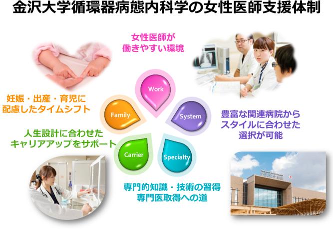 金沢大学循環器病体内科学の女性医師支援制度